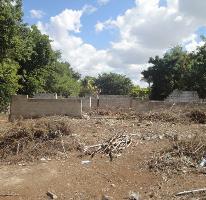 Foto de terreno habitacional en venta en  , chuburna de hidalgo, mérida, yucatán, 2466339 No. 04