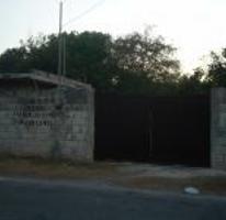 Foto de terreno habitacional en venta en  , chuburna de hidalgo, mérida, yucatán, 2594224 No. 01