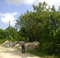 Foto de terreno comercial en venta en chucun, alfredo v bonfil, benito juárez, quintana roo, 1386385 no 01