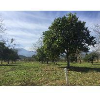 Foto de rancho en venta en  , ciudad allende, allende, nuevo león, 2938726 No. 01
