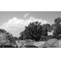 Foto de terreno habitacional en venta en, ciudad cuauhtémoc, pueblo viejo, veracruz, 1136687 no 01