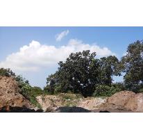 Foto de terreno habitacional en venta en, ciudad cuauhtémoc, pueblo viejo, veracruz, 1303061 no 01