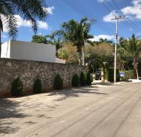 Foto de casa en venta en  , club de golf la ceiba, mérida, yucatán, 4572864 No. 02