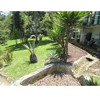 Foto de casa en venta en, coatepec centro, coatepec, veracruz, 1085819 no 01