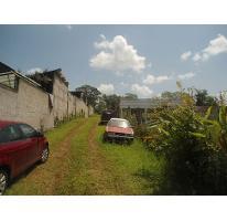 Foto de terreno habitacional en venta en  , coatepec centro, coatepec, veracruz de ignacio de la llave, 2113740 No. 01
