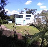 Foto de terreno habitacional en venta en  , coatepec centro, coatepec, veracruz de ignacio de la llave, 2884989 No. 01