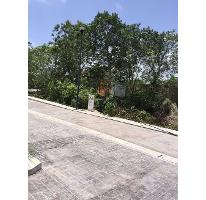 Foto de terreno habitacional en venta en  , colegios, benito juárez, quintana roo, 2793022 No. 01