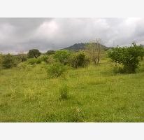 Foto de terreno habitacional en venta en  , colinas del paraíso sección 2, totolapan, morelos, 2713595 No. 05