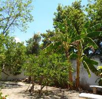 Foto de casa en renta en colonia mexico 1, méxico, mérida, yucatán, 1482889 No. 03