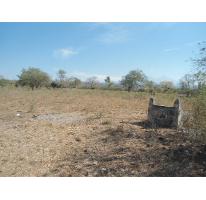 Foto de terreno habitacional en venta en  , comala, comala, colima, 2628075 No. 02