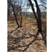 Foto de terreno habitacional en venta en, condado de sayavedra, atizapán de zaragoza, estado de méxico, 1675018 no 01
