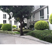 Foto de departamento en renta en, condominios cuauhnahuac, cuernavaca, morelos, 1101363 no 01