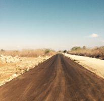 Foto de terreno habitacional en venta en, conkal, conkal, yucatán, 1662128 no 01