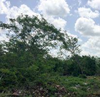 Foto de terreno habitacional en venta en, conkal, conkal, yucatán, 2037100 no 01