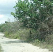 Foto de terreno habitacional en venta en, conkal, conkal, yucatán, 2133746 no 01