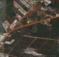 Foto de terreno habitacional en venta en, conkal, conkal, yucatán, 2143838 no 01