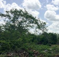 Foto de terreno habitacional en venta en  , conkal, conkal, yucatán, 2310531 No. 01