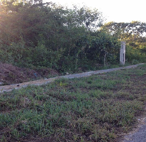 Foto de terreno habitacional en venta en  , conkal, conkal, yucatán, 2313067 No. 01