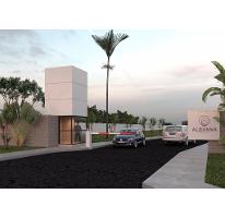 Foto de terreno habitacional en venta en  , conkal, conkal, yucatán, 2327708 No. 01