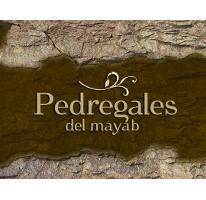 Foto de terreno habitacional en venta en  , conkal, conkal, yucatán, 2982454 No. 01
