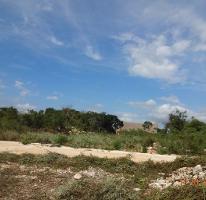Foto de terreno habitacional en venta en  , conkal, conkal, yucatán, 3471428 No. 01