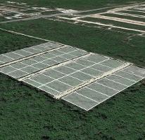 Foto de terreno habitacional en venta en  , conkal, conkal, yucatán, 3646627 No. 01
