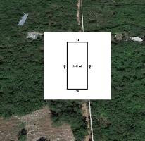 Foto de terreno habitacional en venta en  , conkal, conkal, yucatán, 3735229 No. 01
