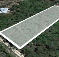 Foto de terreno habitacional en venta en  , conkal, conkal, yucatán, 3735980 No. 01