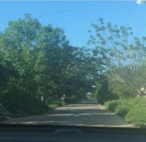 Foto de terreno habitacional en venta en  , conkal, conkal, yucatán, 4637642 No. 01