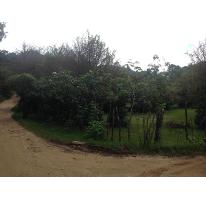 Foto de terreno habitacional en venta en  , corral de piedra, san cristóbal de las casas, chiapas, 2500139 No. 01