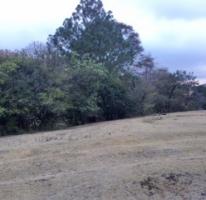 Foto de terreno habitacional en venta en, corral de piedra, san cristóbal de las casas, chiapas, 592804 no 01