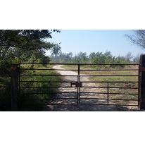 Foto de terreno habitacional en venta en corredor urbano luis donaldo calle 0, miramar, ciudad madero, tamaulipas, 2124463 No. 01