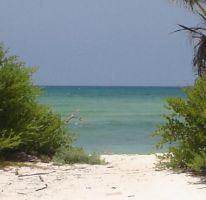 Foto de terreno comercial en venta en costera norte 20, mahahual, othón p blanco, quintana roo, 1728758 no 01