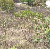 Foto de terreno habitacional en venta en coto el roble , el arenal, el arenal, jalisco, 2749291 No. 01