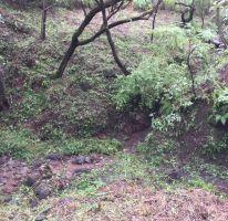 Foto de terreno habitacional en venta en Las Cañadas, Zapopan, Jalisco, 2807795,  no 01