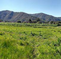 Foto de terreno habitacional en venta en Valle de Bravo, Valle de Bravo, México, 4621075,  no 01