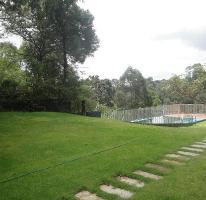 Foto de casa en venta en  , del bosque, cuernavaca, morelos, 1746792 No. 04