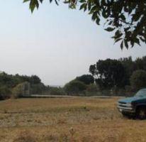 Foto de terreno habitacional en venta en, del bosque, cuernavaca, morelos, 1861898 no 01