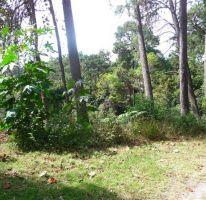 Foto de terreno habitacional en venta en, del bosque, cuernavaca, morelos, 2103888 no 01