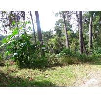 Foto de terreno habitacional en venta en  , del bosque, cuernavaca, morelos, 2103888 No. 01