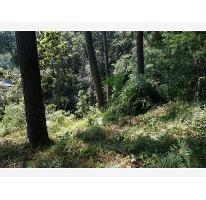 Foto de terreno habitacional en venta en  , del bosque, cuernavaca, morelos, 2106094 No. 01
