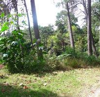 Foto de terreno habitacional en venta en  , del bosque, cuernavaca, morelos, 2587741 No. 01