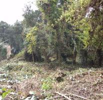 Foto de terreno habitacional en venta en  , del bosque, cuernavaca, morelos, 3736302 No. 01
