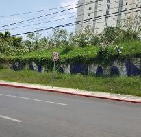Foto de terreno comercial en venta en  , del empleado, cuernavaca, morelos, 2266514 No. 01