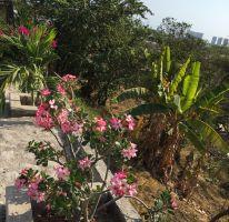 Foto de terreno habitacional en venta en Pitillal Centro, Puerto Vallarta, Jalisco, 2346713,  no 01