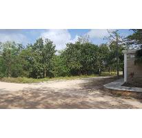 Foto de terreno habitacional en venta en  , doctores ii, benito juárez, quintana roo, 2522912 No. 01