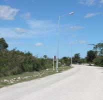 Foto de terreno habitacional en venta en  , dzibilchaltún, mérida, yucatán, 3083533 No. 01