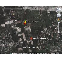 Foto de terreno habitacional en venta en  , dzitya, mérida, yucatán, 1286969 No. 01