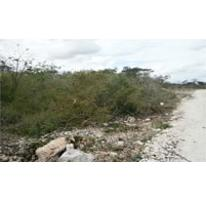 Foto de terreno comercial en venta en  , dzitya, mérida, yucatán, 1296575 No. 01