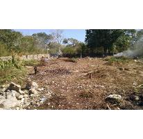 Foto de terreno habitacional en venta en, dzitya, mérida, yucatán, 1721978 no 01